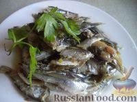 Фото к рецепту: Тюлька (килька) тушеная с зеленым луком