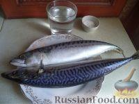 Фото приготовления рецепта: Скумбрия малосольная - шаг №1