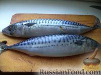 Фото приготовления рецепта: Скумбрия малосольная - шаг №2