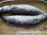 Фото приготовления рецепта: Скумбрия малосольная - шаг №4