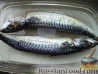 Фото приготовления рецепта: Скумбрия малосольная - шаг №6
