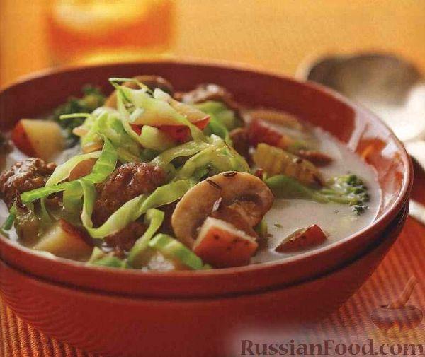 как приготовить суп из капусты и фарша