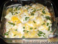 Фото к рецепту: Щука, запеченная под сметанным соусом