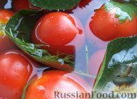 Фото к рецепту: Помидоры квашеные