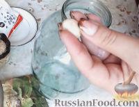 Фото приготовления рецепта: Консервированные огурчики на зиму - шаг №1