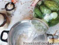 Фото приготовления рецепта: Консервированные огурчики на зиму - шаг №8