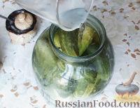 Фото приготовления рецепта: Консервированные огурчики на зиму - шаг №12