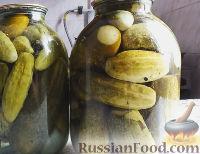 Фото приготовления рецепта: Консервированные огурчики на зиму - шаг №15