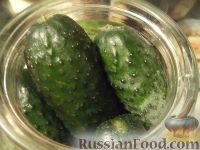Фото приготовления рецепта: Быстрые маринованные огурцы на зиму - шаг №3