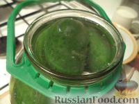 Фото приготовления рецепта: Быстрые маринованные огурцы на зиму - шаг №4