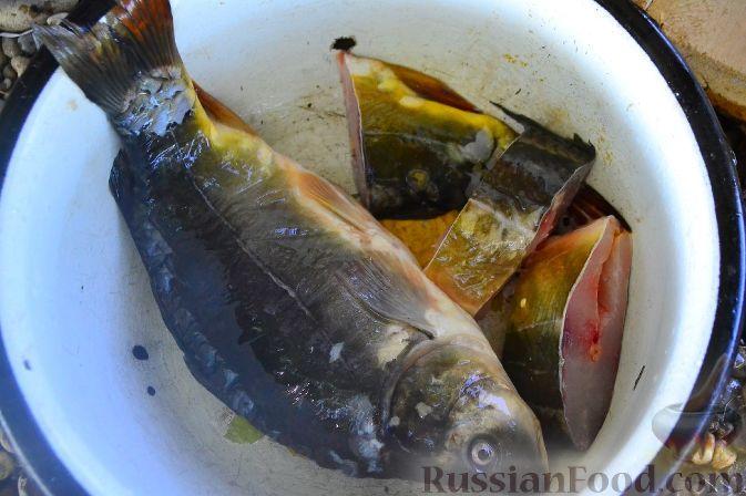 Фото приготовления рецепта: Халасле - венгерский рыбный суп - шаг №5