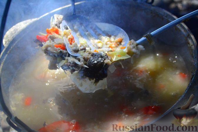 Фото приготовления рецепта: Халасле - венгерский рыбный суп - шаг №6