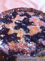 Фото к рецепту: Творожный пирог с ежевикой