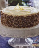 Фото к рецепту: Морковно-имбирный торт