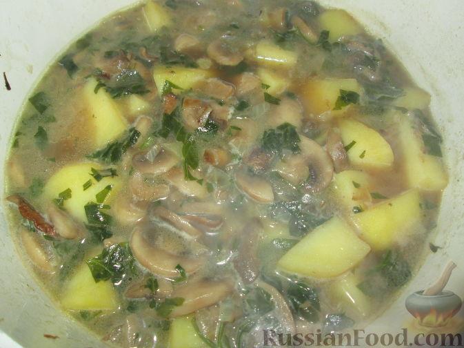 Суп из шампиньонов с картофелем пошаговый рецепт с фото