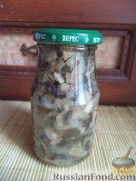 Фото к рецепту: Жареные грибы