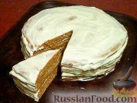 """Фото к рецепту: Торт """"рыжик"""""""