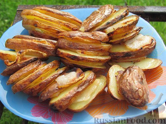 картошка запеченная на углях в фольге с салом