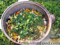Фото приготовления рецепта: Басма - шаг №8