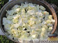 Фото приготовления рецепта: Басма - шаг №9