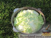 Фото приготовления рецепта: Басма - шаг №10