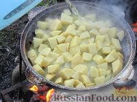 Фото приготовления рецепта: Басма - шаг №12
