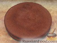 Фото к рецепту: Бисквит шоколадный