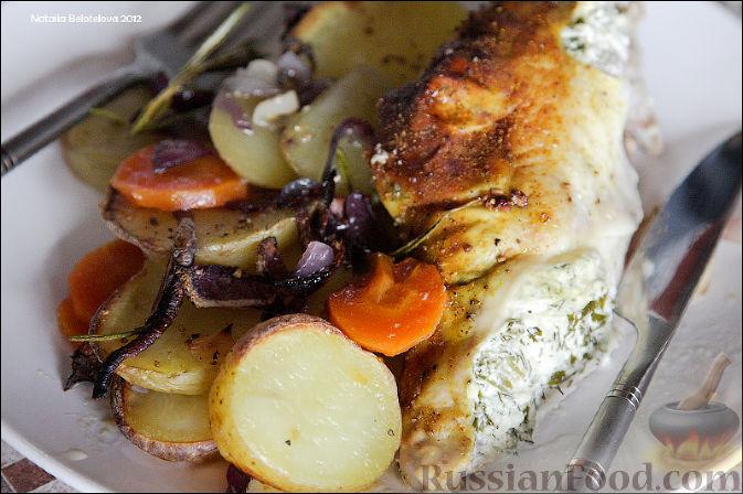 рецепт курицы со сметаной и зеленью