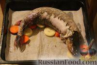Фото приготовления рецепта: Фаршированная щука - шаг №2