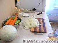 """Фото приготовления рецепта: Салат из капусты """"Витаминный"""" - шаг №2"""