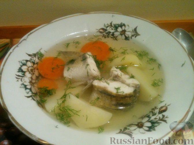 Уха – русское национальное блюдо