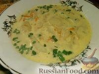 Фото к рецепту: Картофельный суп обыкновенный