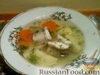 Фото к рецепту: Уха из судака