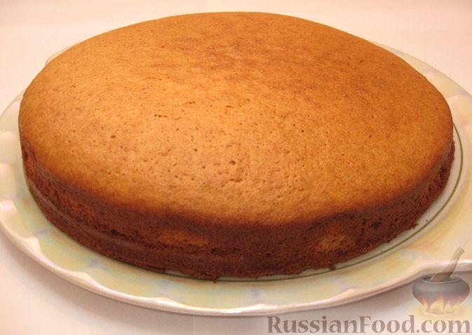 Рецепт торта с какао и сгущенкой