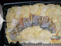 Фото приготовления рецепта: Щука, запеченная с картофелем - шаг №6