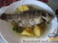 Фото к рецепту: Простой рыбный суп (рыбацкая уха)