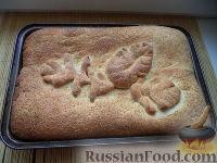 Фото к рецепту: Пирог рыбный