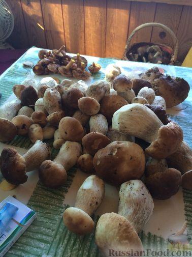 грибы маринованные картинка