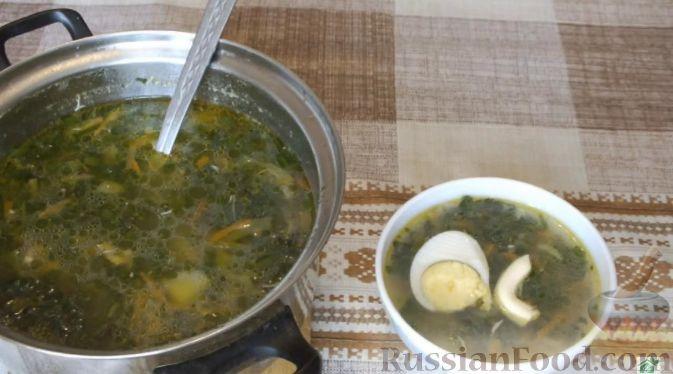 Фото приготовления рецепта: Намазка из сельди со свёклой и плавленым сыром - шаг №6