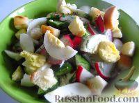 Фото к рецепту: Весенний салат с яйцом