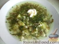 Фото к рецепту: Зеленый борщ с яичной болтушкой