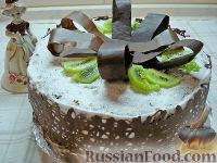 """Фото к рецепту: Торт с творожным кремом и киви, с шоколадным """"бантом"""""""