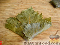 Фото приготовления рецепта: Долма - шаг №11