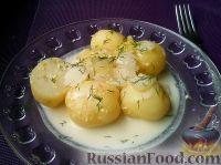 Фото к рецепту: Молодой картофель, тушенный в сметане