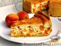 Фото к рецепту: Творожная запеканка с абрикосами