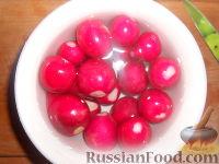 Фото приготовления рецепта: Салат из редиса с огурцами и со сметаной - шаг №5