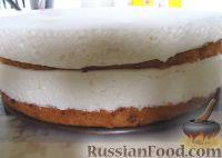 Птичье молоко торт классический рецепт с фото