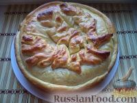 Фото к рецепту: Пирог из щавеля