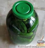 Фото к рецепту: Огурцы соленые (холодный способ)