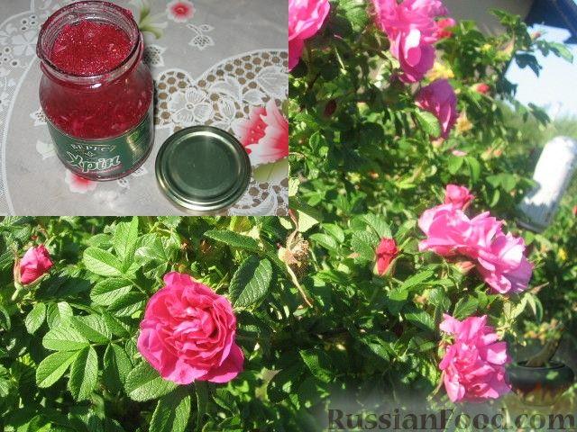 Рецепт Заготавливаем чайную розу. Лепестки розы, перетертые с сахаром.